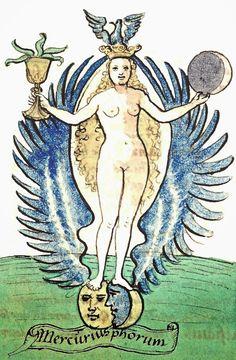 The Mercurius Phorum